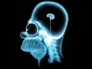 """Куріння спричиняє """"розкладання"""" мозку - вчені"""