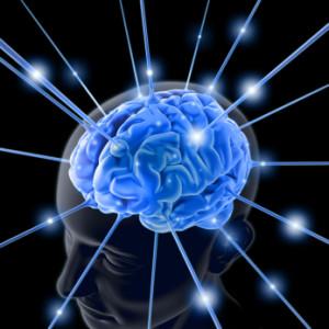 Вчені розвінчали міфи про мозок людини