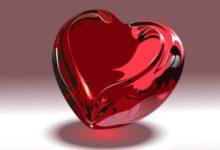 Серце - Шкільне життя