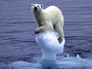 Глобальне потепління: нові прогнози