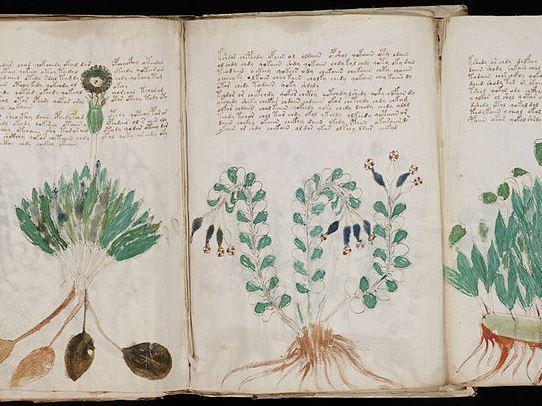 У середньовічному манускрипті виявили послання