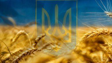 Photo of Україна- рідний край (Інформаційно – пошуковий проект. 4 клас )