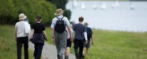 Прогулянки - Шкільне життя