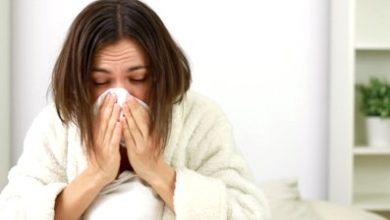 Простуда - Шкільне життя
