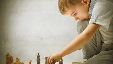 Photo of Самостійність розвиває інтелект у дітей