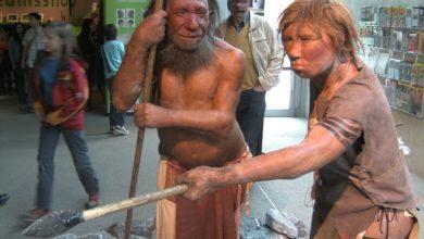 Photo of Неандертальці вміли нагрівати воду – вчені
