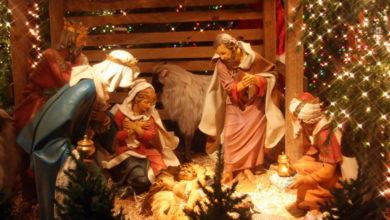 Різдво - Шкільне життя