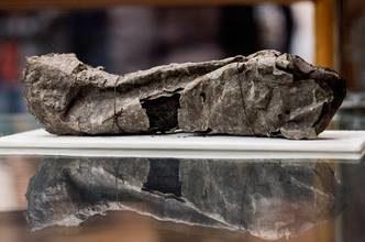 Photo of Дослідники почали читати сувої, засипані попелом під час виверження Везувію