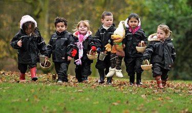 Photo of Зелені насадження позитивно впливають на когнітивні функції дітей