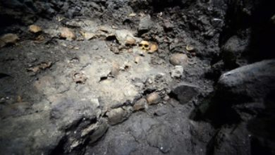 Photo of Мексиканські археологи відкопали стіну з людських черепів