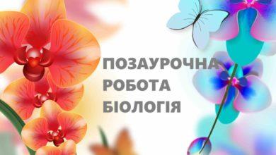 Біологія - Шкільне життя