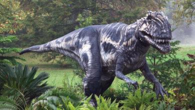 Photo of Вчені встановили, що загибель динозаврів спричинив «подвійний удар»